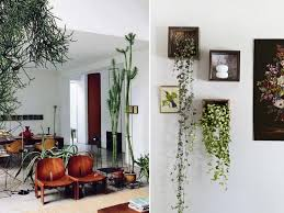 Creative Plants For The Living Room Living Room Living Room Decor Plants  All About Us