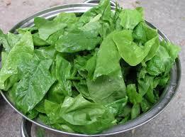 Leaf Vegetable Wikipedia