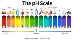 Ph Spectrum Food Chart Ph Scale Images Stock Photos Vectors Shutterstock
