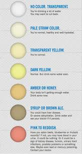 Toddler Urine Colour Chart What Your Pee And Poo Color Says About Your Health Live