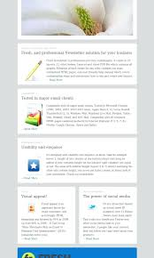 professional newsletter templates for word template newsletter template word 2007 templates free download