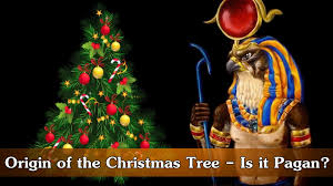 Origin of the Christmas Tree - Is it Pagan? - YouTube