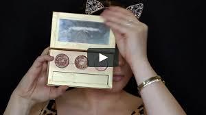 lion lioness cat makeup
