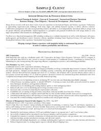 Operating And Finance Executive Resume
