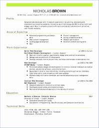 9 Mock Online Job Application Best Templates