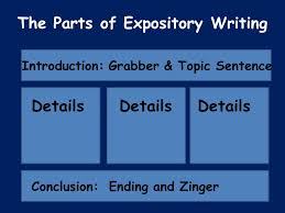 Parts Of A Essay Parts Of An Expository Essay
