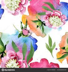 Mooie Roze Pioen Bloemen Met Groene Bladeren Geïsoleerd Een Witte