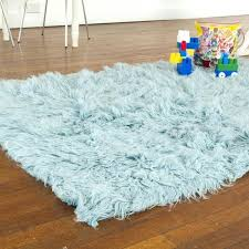 rug cleaning purple braiding wool furry rugs crate and barrel lime green rake light blue