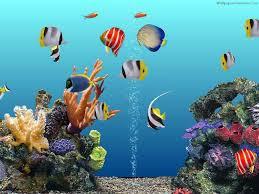 3D Aquarium Wallpapers