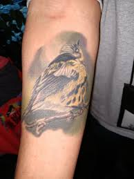 Bird Tattoo Contest Black Swamp Bird Observatory Brings You The