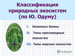 Презентация на тему i Наземные биомы экосистемы ii Водные  Типы пресноводных экосистем iii Типы морских экосистем Классификация природных экосистем по Ю Одуму