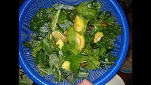 Sle Diet Chart Girl With Lupus Sle Raise Energy Levels In A Month With