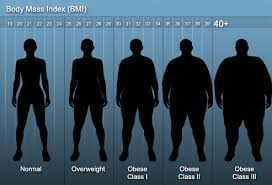 Bariatric Bmi Chart Weight Loss Surgery What To Expect