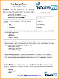 Sample Executive Summary For Resume 028 Marketing Plan Business Executive Summary Template