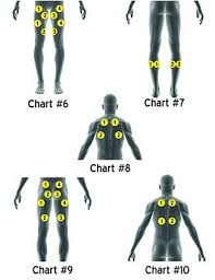 Tens And Ems Device Placement Charts Stimrx Electronic Muscle Stimulation Ems Pad Placement