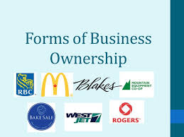types of business ownerships forms of business ownership canadian business types in canada we