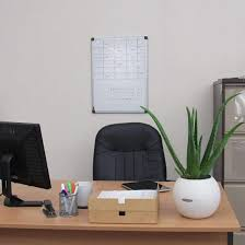 Office desk top Executive The Plants From The Aloe Genus Especially The Aloe Vera Is Undoubtedly The Best Choice For Your Office Desk Its Low Maintenance Plant And Has Proven Balcony Garden Web 15 Best Office Desk Plants That Dont Need Space Balcony Garden