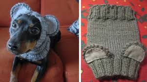 Crochet Dog Hat Pattern Simple Knitted Dog Hats With Ears Easy Free Patterns