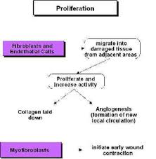 Ultrasound Dosage Chart Ultrasound Therapy Physiopedia