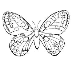 Kleine Vlinder Kleurplaat Gratis Kleurplaten Printen