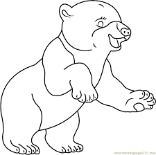 Small Picture Smiling Polar Bear Coloring Page Free The Little Polar Bear