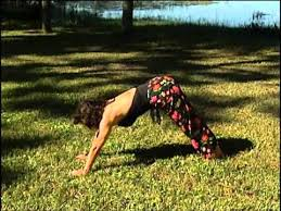 inflexible people. downward dog for inflexible people n