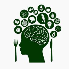 Znalezione obrazy dla zapytania brain food