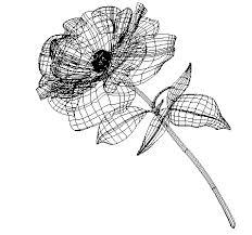 デザイナーの本屋さん グラデーションメッシュで花を描く