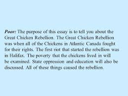 writing a research paper everything you will ever need to know  poor the purpose of this essay is to tell you about the great chicken rebellion