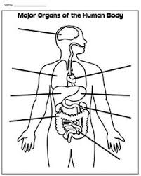 Small Picture Marvelous Human Body Coloring Book Coloring Page and Coloring