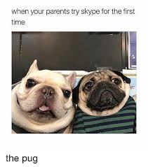 Me The Parents First Your Try For On When Meme me Pug Time Skype