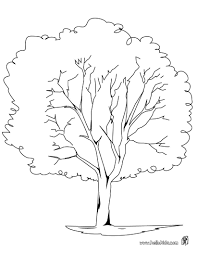 Nice Nature Coloring Page Perfect Coloring