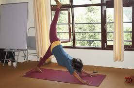 yoga teacher in india goa