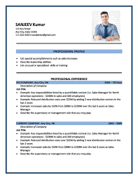 Resume Format Example Mesmerizing American Cv Format Download Brave28