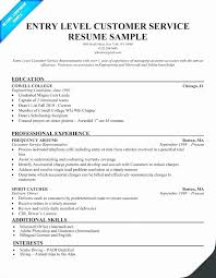 Free Sample Resume Title Examples For Entry Level Visit To Reads
