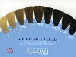 hair color levels full size 2000 1500 pixels