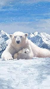 Home - Along Came Quilting, Calgary, Alberta, Canada Quilt Shop ... & Polar Frost Adamdwight.com