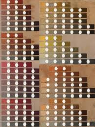 Zoe Becton Munsell Soil Color Chart