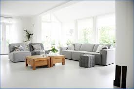Zwart Wit Interieur Witte Woonkamer Met Zwarte Accenten Een Warm