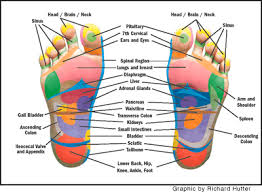 Foot Pressure Points Chart Hand And Foot Pressure Points Chart Www Bedowntowndaytona Com