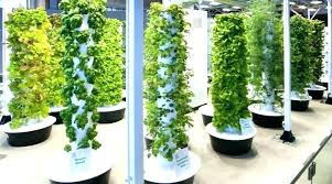 hydroponic garden tower. Perfect Hydroponic Hydroponics Garden Tower Hydroponic Interior And Exterior Decor    To Hydroponic Garden Tower R