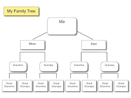 Ancestry Diagram Diagram Of A Family Tree Chart Lytte Co