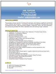 Cv Samples For Mba Finance Professional Resume Templates