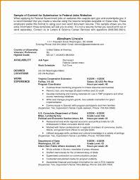 Resume Writing Services Dc Incredible Federal Resume Writing Service