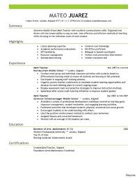 Resume Format Usa Amazing Government Job Resume Template Sample