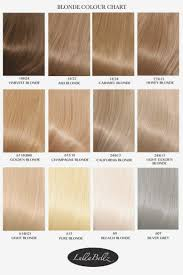 Organized Blonde Hair Chart Colors Snghair Color Chart