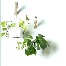 wall plant hanger indoor plant hanger wall hanging planter with grey thread modern macrame hangers architects wall plant hanger