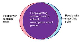 Gender Venn Diagram Gender Diagram I Made This As A Response To A Specific Con