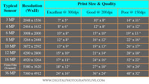 Print Size Chart Megapixels Vs Print Size How Big Can You Print Digital