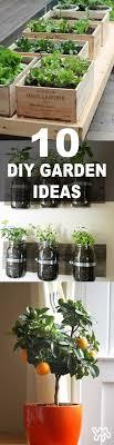 Balcony Kitchen Garden 17 Best Ideas About Balcony Garden On Pinterest Small Balcony